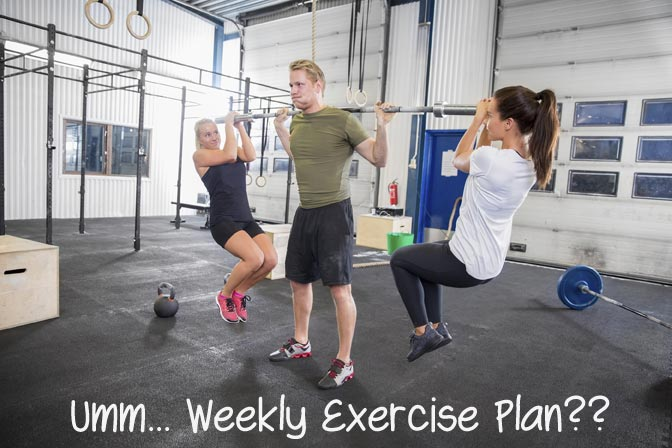 Weekly Excercise Plan